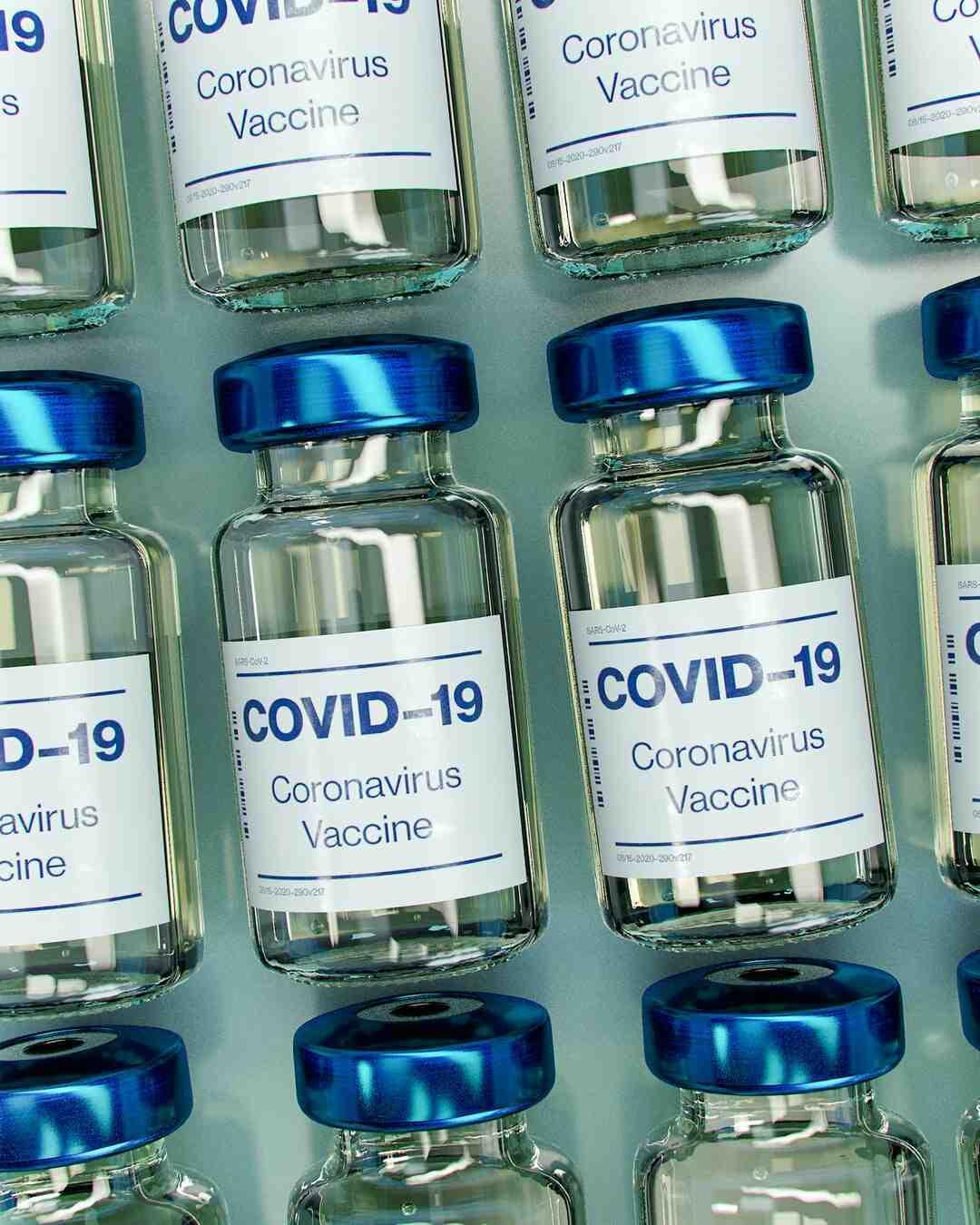 Maladie de Lyme : Symptômes, Causes, Traitement